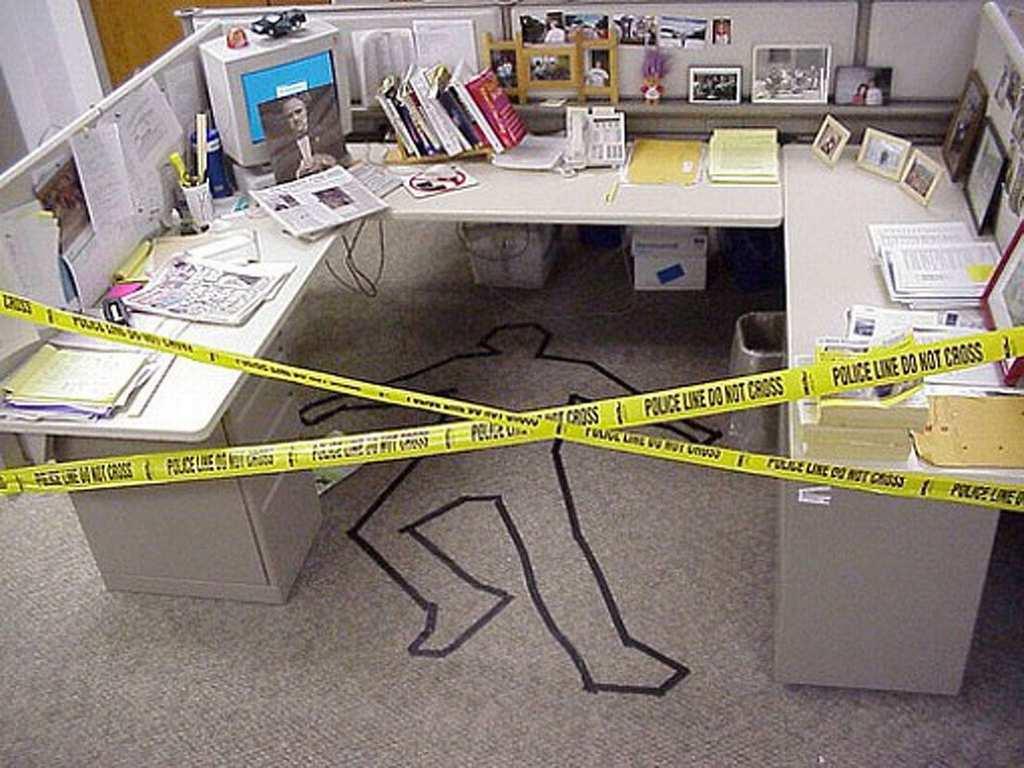 office 44